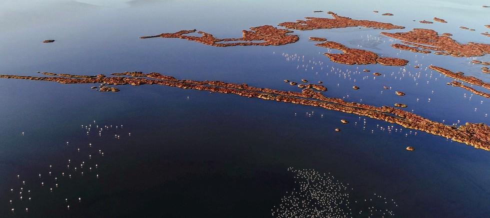 İzmir Büyükşehir Belediye Başkanı Tunç Soyer açıkladı:  Gediz Deltası UNESCO Yolunda
